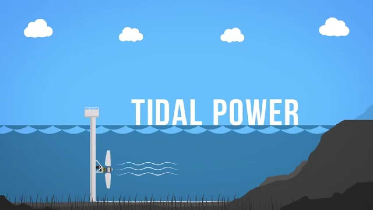 Tidal Power Veus Shipping Com
