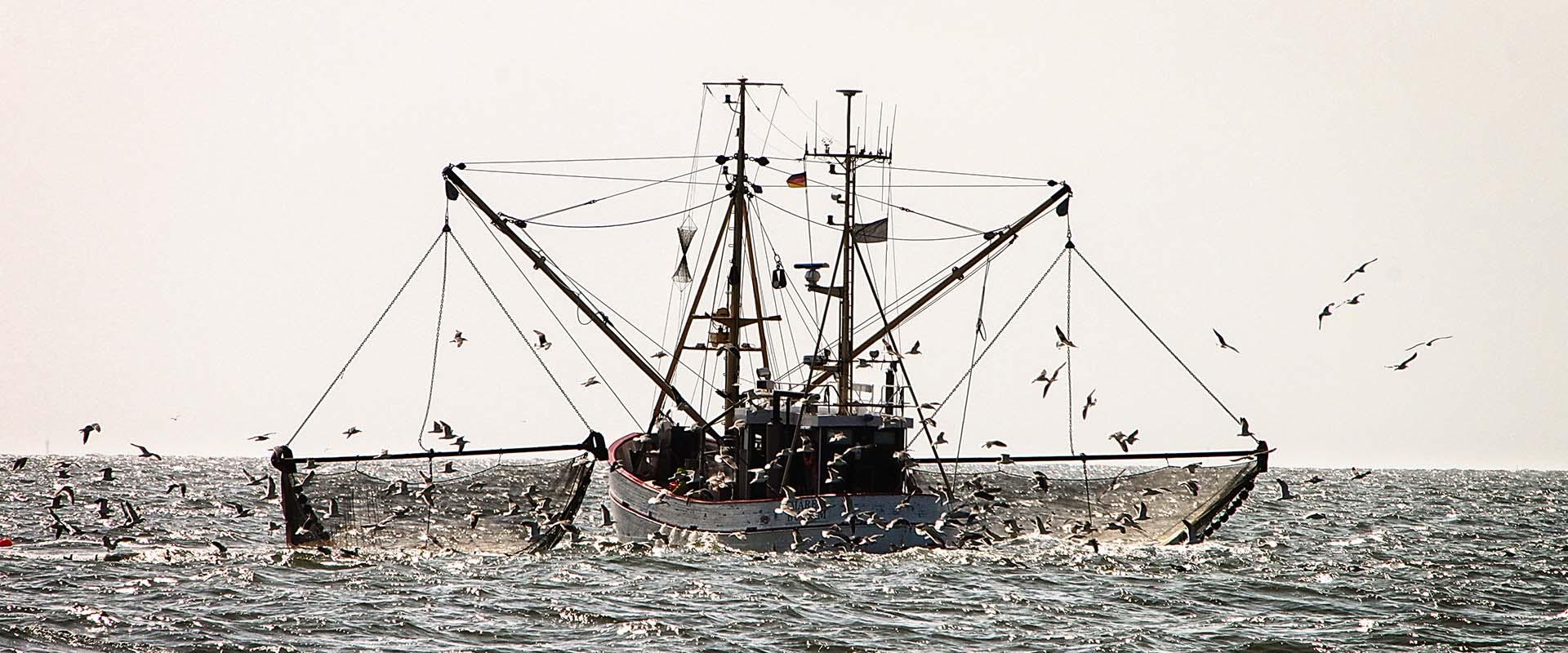 Fischereischiff auf Fangfahrt.