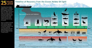 M/T Exxon Valdez: The worst accident which changed the tanker Industry