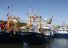 Muschelfischerflotte der Sylter Muscheln GmbH. © P.Pospiech